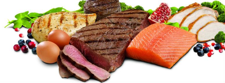 besinler, besinlerin gerekliliği, vücuda gerekli besinler