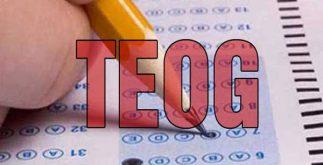 teog sınavı nedir, temel eğitim sınavı nedir, temelden ortaöğretime geçiş sınavı