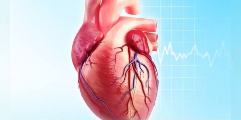 koroner arter hastalığı, koroner arter hastalığı belirtisi, koroner arter hastalığı nedenleri